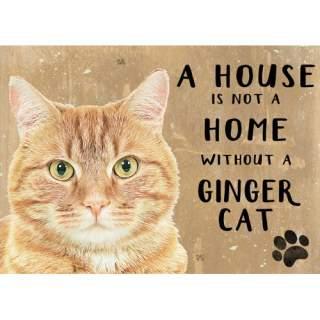Ginger kissa -peltikyltti 20x15 cm