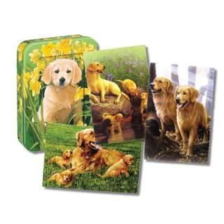 Koiranpennut -kortit peltirasiassa
